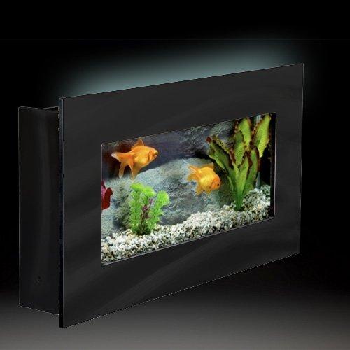 Amazon.com: Aussie Aquariums Wall Mounted Aquarium, Mini Black: Home &  Kitchen