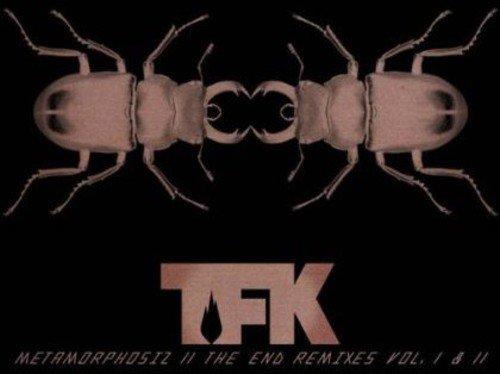 Metamorphosiz ll The End Remixes Vol. I & II by TFK Music