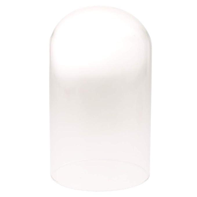 D DOLITY C/úpula de Cristal Decorativa con Base de Madera Contenedor de Exhibici/ón Micro Paisaje A