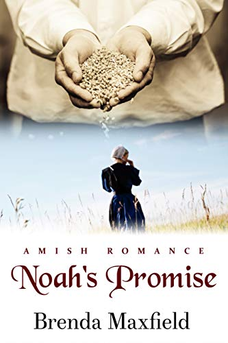 Noah's Promise (Hannah's Story Book 2) ()