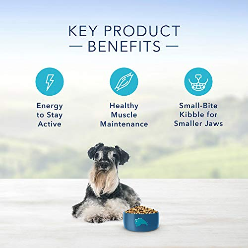 Blue Buffalo Life Protection Formula Small Breed Senior Dog Food - Natural Dry Dog Food for Senior Dogs - Chicken and Brown Rice - 15 lb. Bag