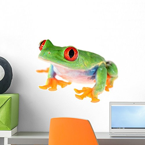 - Wallmonkeys Red-Eye Tree Frog Agalychnis Callidryas Wall Decal Peel and Stick Graphic WM618 (18 in W x 14 in H)