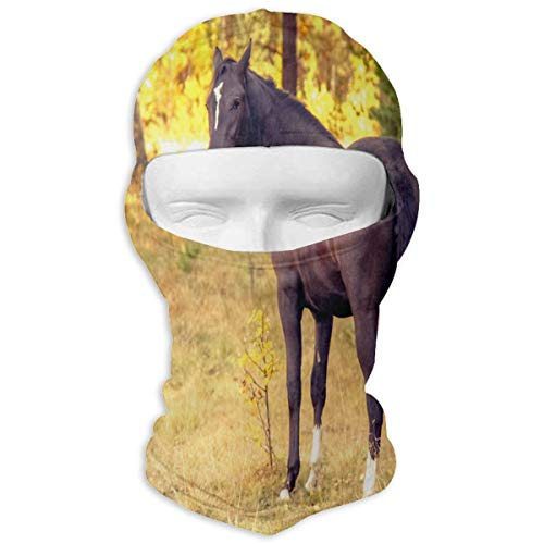Balaclava Autumn Horse Autumn Full Face Masks Ski Headwear Motorcycle Hood For Cycling Sports Hiking