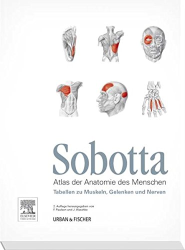 sobotta-tabellen-zu-muskeln-gelenken-und-nerven-tabellen-passend-zur-23-aufl-des-sobotta-atlas
