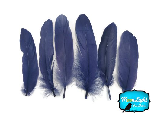 1 Dozen NAVY BLUE Stripped Rooster Coque Tail Feathers Craft Party Supplier