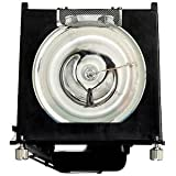 HP L2114-80001 OEM Lamp Equivalent with Housing