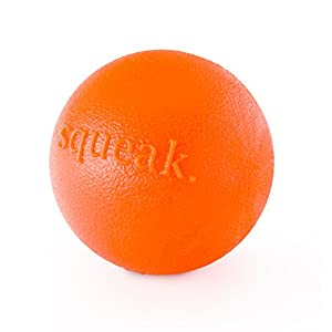 Planet Dog Orbee-Tuff Squeak, Nearly Indestructible Dog Ball Fetch-Chew Toy for Aggressive Chewers, Made in the USA, Medium 3-Inch, Orange