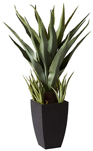 Nearly Natural 4856 Agave Plant with Black Planter, - Lighted Rack Decor Pot