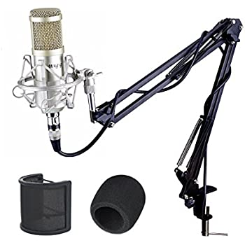 mugig condenser mic professional studio microphone with microphone stand xlr cable. Black Bedroom Furniture Sets. Home Design Ideas