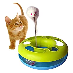 Foodie Puppies Happy Kitten Plastic Circle with Ball and Catch The Mouse Motion to Exercise Pet's Natural Instinct with Fun Toy (Colour May Vary)