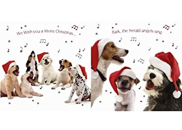 Mixed Dogs Christmas Card Pack Of 10 Dog Themed Xmas Cards Amazon