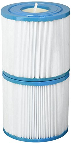 Filbur FC-2386 Antimicrobial Replacement Filter Cartridge for Rainbow DSF 35 Pool and Spa Filter ()