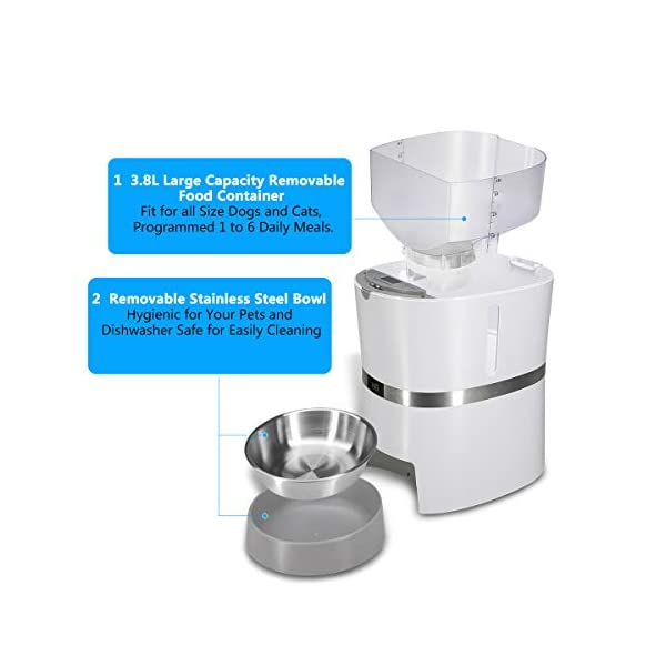 HoneyGuaridan A36 Automatic Pet Feeder, Dog, Cat, Rabbit & Small Animals Food Dispenser with Stainless Steel Pet Food… Click on image for further info. 2