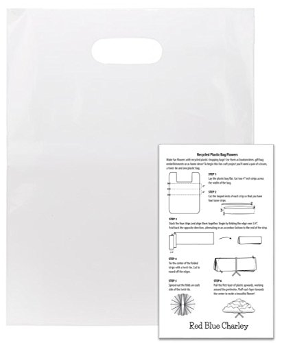 100 White 12x15 Die Cut Handle Merchandise Bags 2.25 mil with Craft Insert