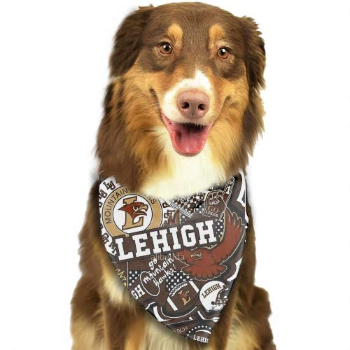 (Premium Home Lehigh Collge Pet Classic Solid Color Dog Collar Collection - Regular Collars, Seatbelts, Personalized Collars and Bandana)
