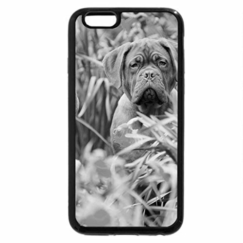 iPhone 6S Plus Case, iPhone 6 Plus Case (Black & White) - couple of cute dogs in the camp