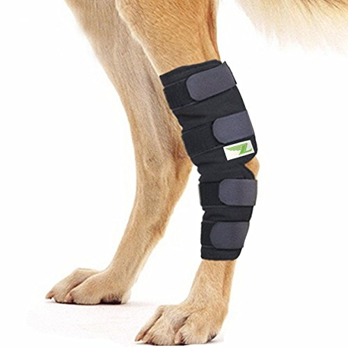 Rear Dog Leg Joint Brace Heals Hock Wrap Sleeve for Canine