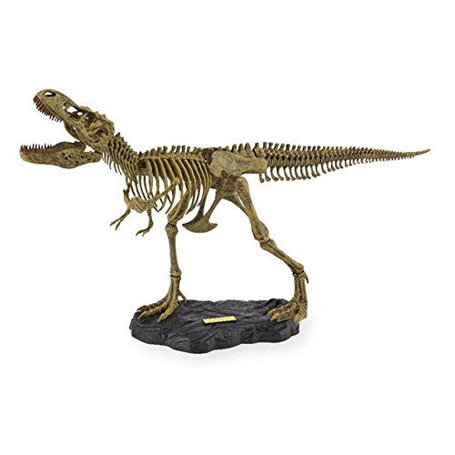 EduScience - Wacky Lab - Mighty T-Rex Model Kit by Beckett Publications - Tyrannosaurus Rex Skeleton Model