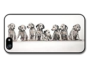 AMAF ? Accessories Eight Cute Dalmatian Puppies case for iPhone 5 5S
