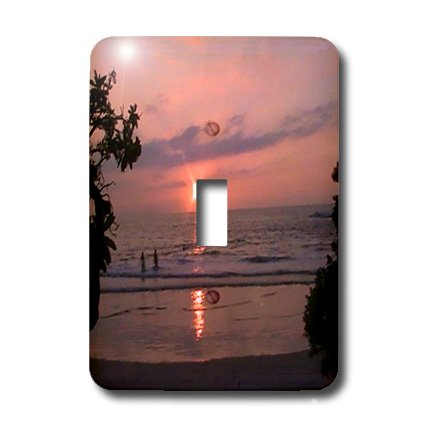 lsp_6075_1 Sandy Mertens Hawaii Travel Designs - Hawaiian Sunset - Light Switch Covers - single toggle switch by 3dRose