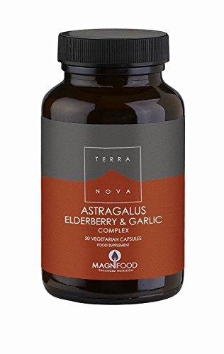 TERRANOVA Astragalus Elderberry Garlic Complex – 50 Vegicaps