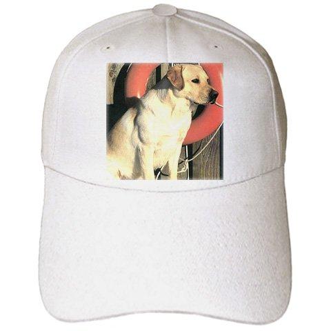 24d6d1479d0 Amazon.com  Dogs Labrador Retriever - Yellow Labrador Lab - Caps ...