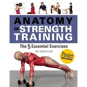 {ANATOMY OF STRENGTH TRAINING} BY Manocchia, Pat (Author )Anatomy of Strength Training: The 5 Essential Exercises [With Poster](Paperback) - Anatomy Strength Training Poster