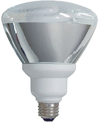 GE Lighting replacement 1300 Lumen Floodlight