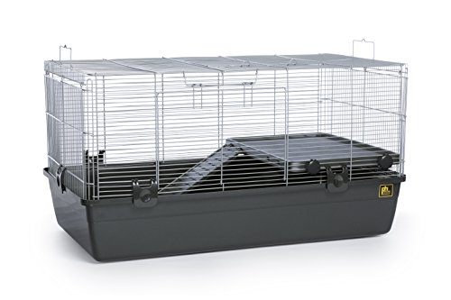 Prevue Pet Products 528 Universal Small Animal Home, Dark Gray (Critter Cage Hamster)