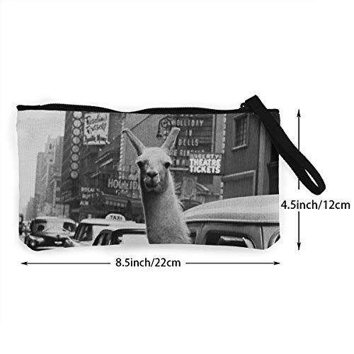 Amazon.com: Coin Pouch Funny Taxi Alpaka Llama - Monedero de ...