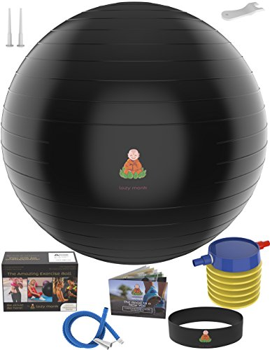 Balance Set (Exercise Ball Stability Fitness Balls | Best Professional Balance Anti-Burst Set – Yoga Large Thick Gym Ball With Pump & Accessories, Extra Pin For Valve, Elastic Loop & Hard Cover Workout Guide…)
