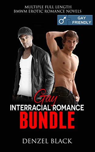 Can gay interracial romance fiction