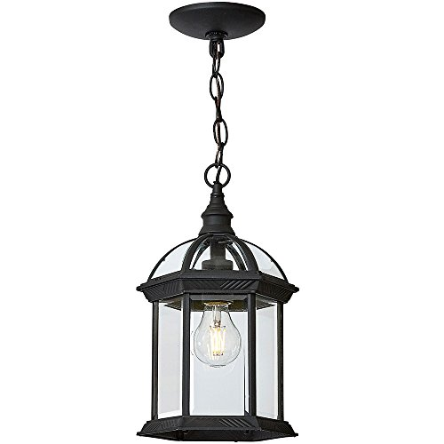 Classical Outdoor Hanging Chandelier | Black Metal with Clear Glass | Downward Hanging Traditional Exterior Light with LED Edison Bulb 2700K Included