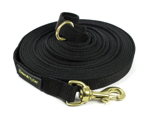 Dean & Tyler Track Single Ply Black Nylon 30-Feet by 3/4-Inch Dog Leash with a Ring on Handle and Solid Brass Snap Hook by Dean & Tyler