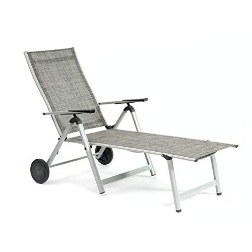ng Aluminum Frame Reclining Silver Chaise Lounge with Wheels and Black Hardware + Free Basic Design Concepts Expert Guide ()