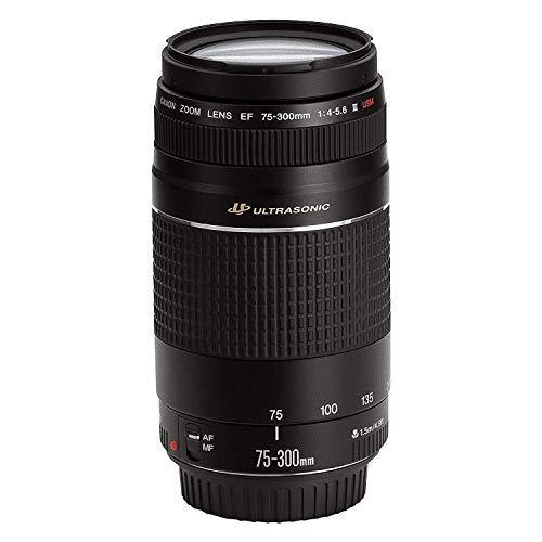 Canon EF 75-300mm f/4-5.6 III USM Telephoto Zoom Lens for Canon SLR Cameras - White Box(Bulk Packaging)