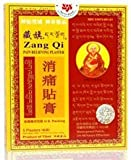 Zang Qi Plaster from Solstice Medicine Company - 5 Plaster (4.75 x 3.5 in) Patches