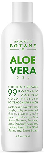 Aloe Vera Plant For Skin Care - 4
