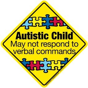 Autistic Child Emergency DECAL non magnetic product image
