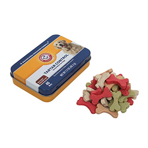 Arm & Hammer Dog Dental Care Tartar Control Dental Mints for Dogs | Reduces Plaque & Tartar Buildup Without Brushing, 1.7 ounces (40 Pcs), Beef Flavor (Packaging may vary)
