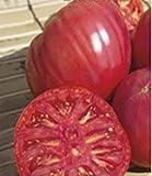 NIKITOVKA Seeds Tomato Malyynove Vikante, Pink - Rosa (40 Seeds) Non GMO Heirloom for Planting