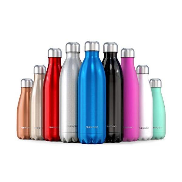 Proworks Bottiglia Acqua in Acciaio Inox, Senza BPA Vuoto Isolato Borraccia Termica in Metallo per Bevande Calde per 12 Ore & Fredde 24 Ore, Borraccia Sport, Lavoro e Palestra - 350ml/500ml/750ml/1L 1 spesavip