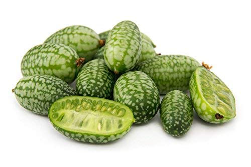 15 Cucamelon Seeds - Mouse Melon, Mexican Sour Gherkin, Mini Watermelon, Melothria Scabra - by RDR Seeds by RDR Seeds (Image #3)