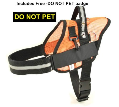 weight Service Harness RedLine K9 product image