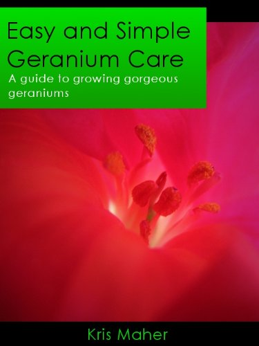 easy-and-simple-geranium-care-a-guide-to-growing-gorgeous-geraniums
