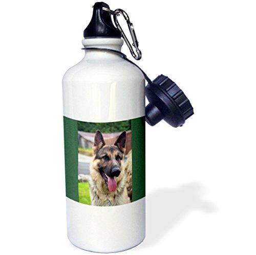 (3dRose wb_1222_1 German Shepherd Portrait Sports Water Bottle, 21 oz, White)
