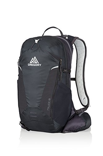 Gregory Miwok Daypack - 2