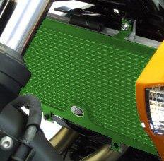 R&G(アールアンドジー) ラジエターガード アルミニウム グリーン ER-6f/Ninja650R[ニンジャ](09-12) VERSYS [650cc] [ヴェルシス](10-12) ER-6n(09-12) RG-RAD0091GR RG-RAD0091GR   B00OKEPRM8