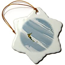 3dRose orn_94757_1 Snowboarding, Big Cottonwood, Wasatch-Cache Nf, Utah-Us45 Hga0072-Howie Garber-Snowflake Ornament, 3-Inch, Porcelain
