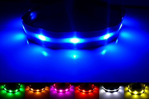 GoDoggie-GLOW USB Rechargeable LED Dog Safety Collar, Large ( 15 - 23.6' / 38 - 60 cm ), Blue